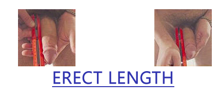 measuring erect length